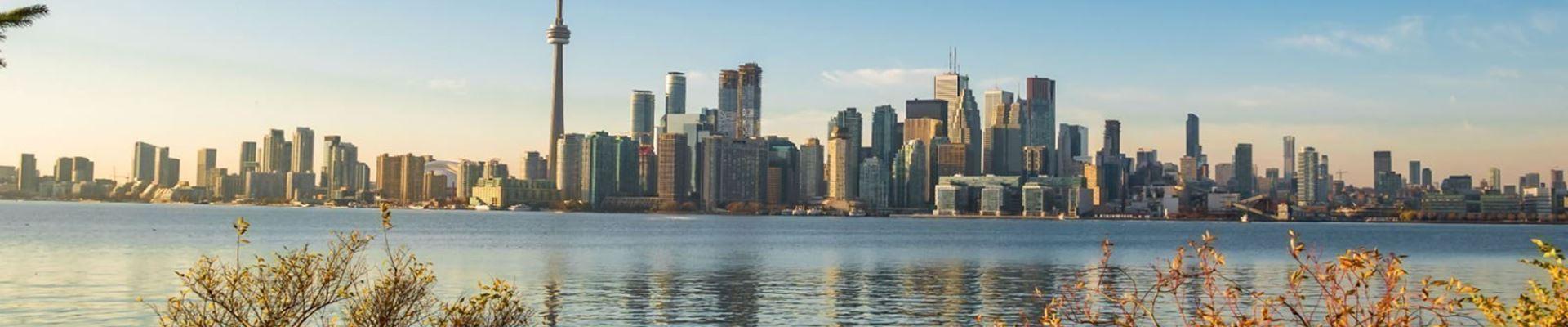 Family Break In Toronto 2020 2021 Canada